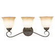 Design House Cameron 3-Light Vanity Light - 512665