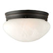 Design House Millbridge 2-Light 9.5-Inch Ceiling Mount
